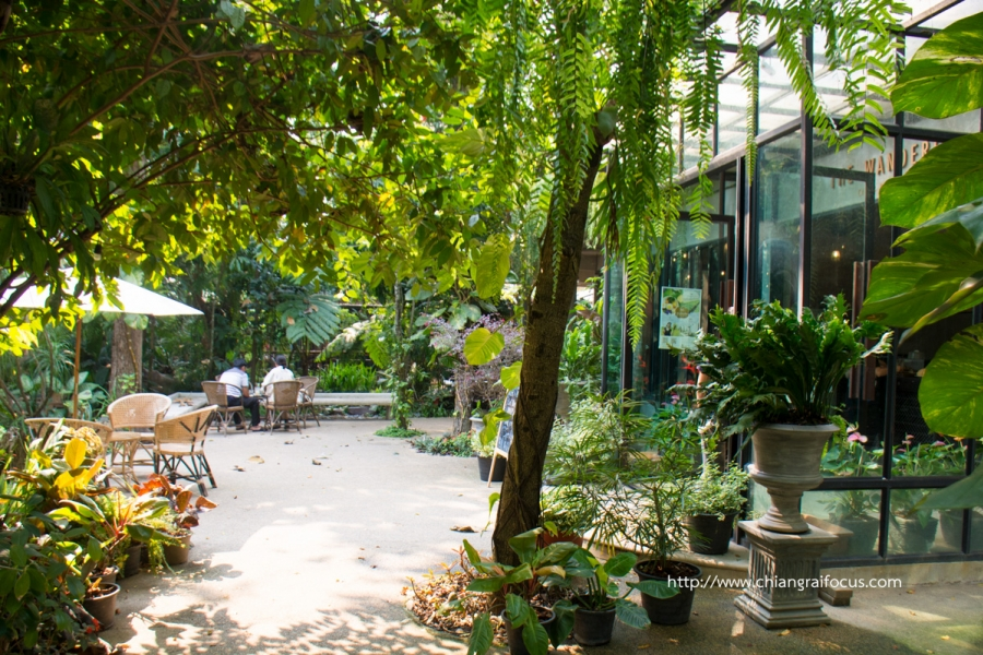 The Wanderer Café ความรัก ความหลัง ความทรงจำ กาแฟดอยช้าง